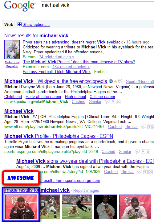 vick_google_screenshot